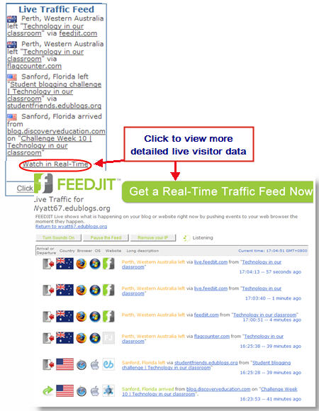 Example of Feedjit Live Traffic widget